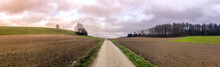 Gravel Path Countryside Agricu...