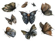 Night Dark Butterflies Set. Ab...