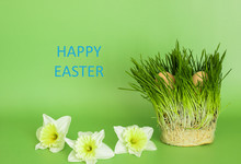 Easter Day, Two Egs Jn The Grass