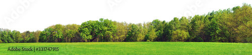 Fényképezés Waldrand Panorama im Frühling - Freisteller