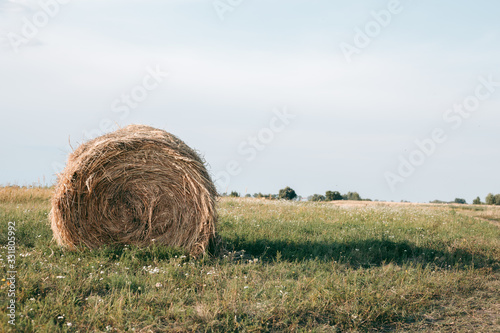 Haystack on a field in autumn in sunny weather Canvas Print