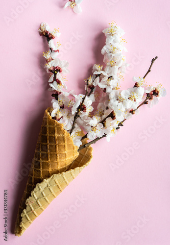 Photo Spring floral concept with apricot blossom