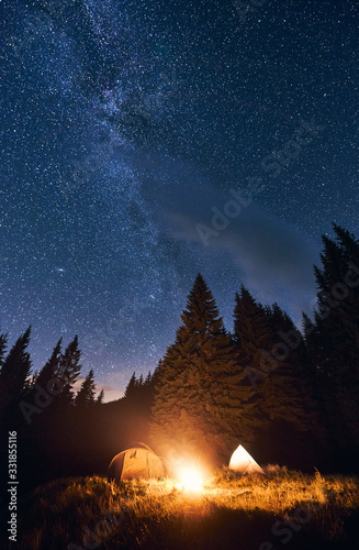 Fototapeta Bright night sky is strewn with stars and Milky Way. Silhouettes of huge fir trees add magic to the landscape. Evening camping in a pine forest with a burning campfire near two tourist tents obraz na płótnie