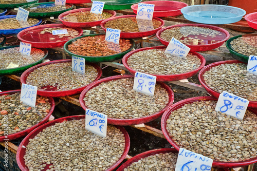 Photo Different kinds of bivalves for sale at a market