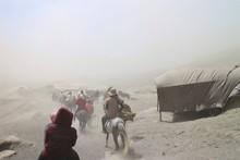 Tourists On Horses Travel Thro...