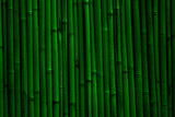 Bamboo wall background. Dark green bamboo fence texture