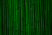 Bamboo Wall Background. Dark G...