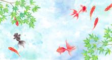 金魚と新緑のモミジで構成した夏のイメージ背景、水彩イラスト