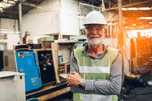 Portrait Of Senior Industry Fa...
