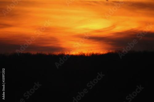 Sunset on the Grassy Plains