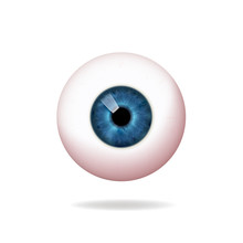 Human Blue Eyeball, Retina, On...