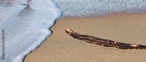 Ecume de mer en bord de plage Canvas Print