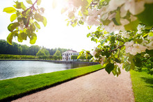 Spring View Of Maly Palace In ...