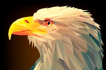 Low Poly Eagle