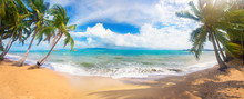 Panoramic Tropical Beach With ...