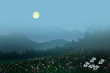 Beautiful Flower Field On The ...