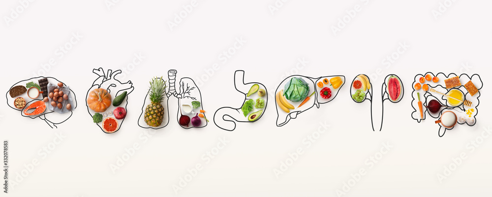 Fototapeta Best menu for healthy body. Collage with outlines of human internal organs and wholesome foods on white background