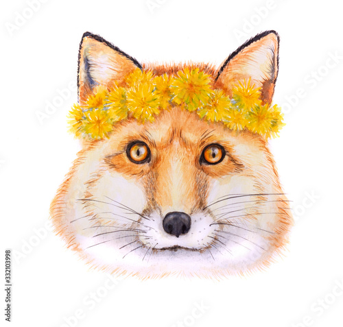 Watercolor fox in the wreath from the dandelions