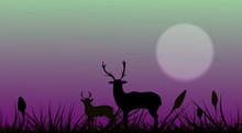 Silhouette Of Animals. Two Dee...