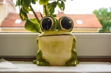 Closeup Shot Of Frog Statue  N...