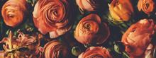 Vintage Bouquet Of Beautiful R...