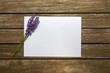 Weißes Papier für Notiz auf Holztisch mit Deko