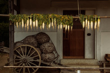 Old Wooden Cart With Daikon
