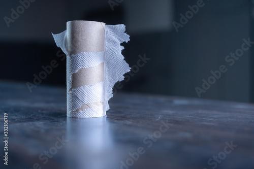 Fotografie, Obraz Toilettenpapier kaufen in der Zeit des Corona Virus