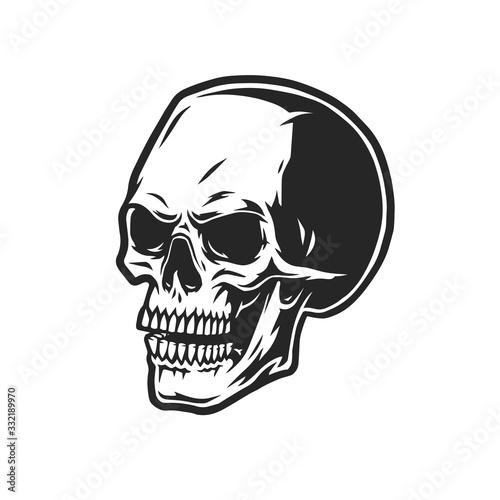 Fotografiet Scary human skull vintage concept