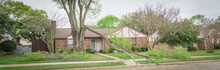 Panoramic Fallen Maple Tree Branch On Sidewalk Of Residential House Near Dallas, Texas, America