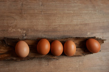 Five Eggs Lie In The Bark On A...