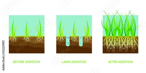 Lawn aeration Canvas-taulu