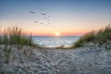 Sand Dunes On The Beach At Sun...