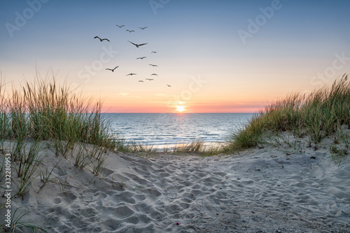 Fototapeta Sand dunes on the beach at sunset obraz