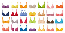 Bra Of Underwear Vector Cartoo...