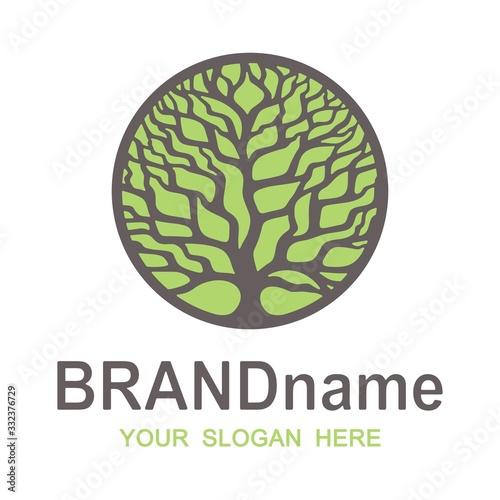 Vászonkép Logo branchy brown tree of life