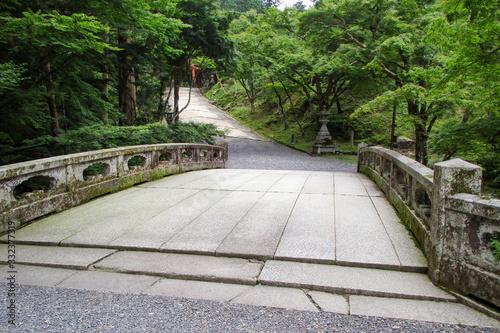 緑に囲まれた神社の参道 Wallpaper Mural