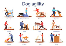 Dog Agility Set. Training Exer...