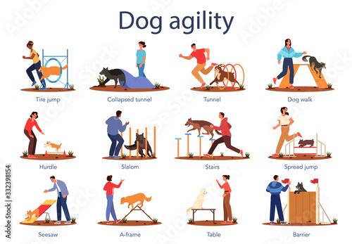 Photo Dog agility set