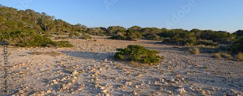 Cuadros en Lienzo Landscape of the west coast of Ibiza (Cala d'Hort) - Landschaft an der Westküste