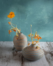 Still Life Of Withered Flowers...