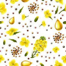 Rape Seeds And Flowers, Canola...