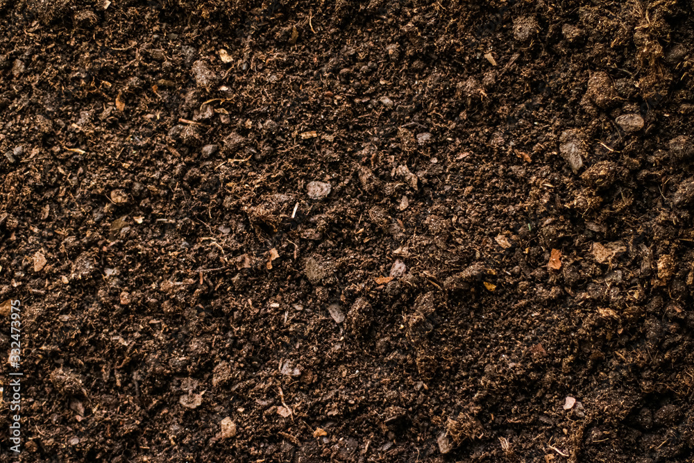 Fototapeta Earth ground texture as background, nature and environment