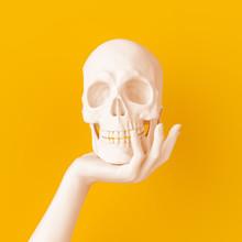 Hand Holding White Skull Art Creative Concept Banner 3d Rendering