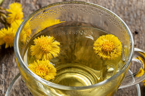 Vászonkép Fresh coltsfoot flowers in a cup of coltsfoot tea