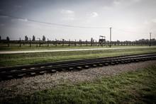 Birkenau Concentration Camp Mu...