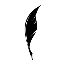 Feathers Pen Black Icon Silhouette. Logo Goose Lightweight Feather Contour. Vector Illustration