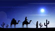 Camels In The Desert Night, Mo...