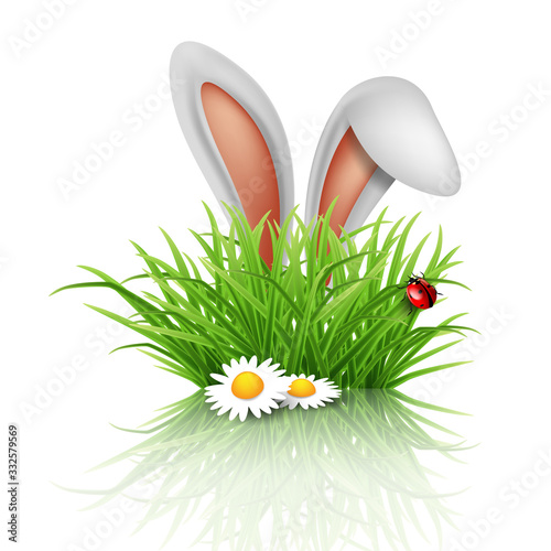 Obraz Happy Easter greeting card. Rabbit ears peeping out of grass with daisies. - fototapety do salonu