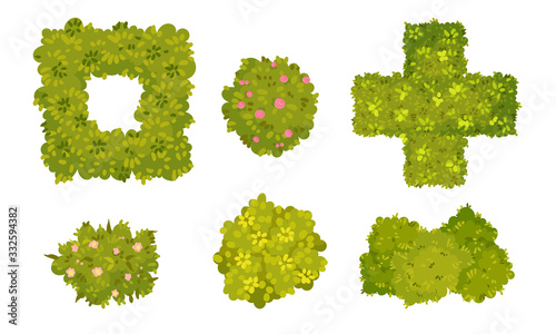 Fototapeta Shaped Green Bushes Planted in Parks and Gardens Above View Vector Set obraz